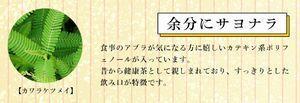 4.カワラケツメイ.jpg
