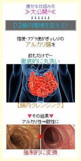 【1】腸内環境を変える!!.jpg