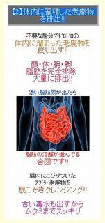 【2】体内に蓄積した老廃物を排出!!.jpg