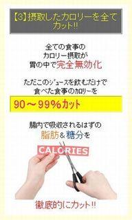 【3】摂取したカロリーを全てカット!!.jpg