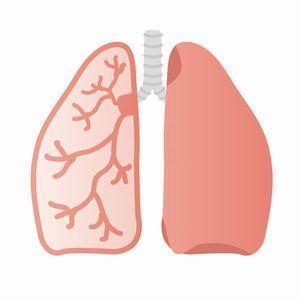 呼吸器.jpg